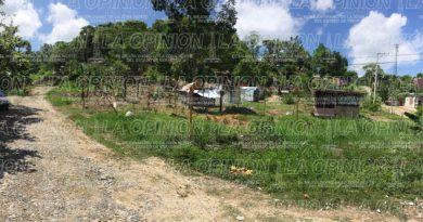 Denuncia penal contra responsable del delito de invasión en área verde