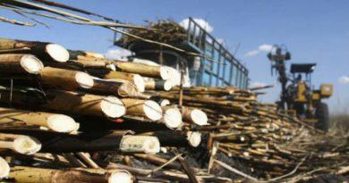 EU extiende el plazo para las negociaciones de azúcar con México