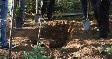 Hallan 14 cuerpos en fosa clandestina de Baja California Sur