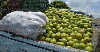 Hasta 5 mil pesos la tonelada de naranja