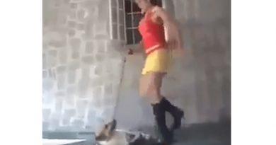 Mujer patea brutalmente a un perrito