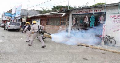 No quieren casos de dengue