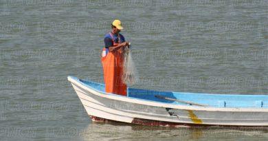 Panorama desalentador por la caída de la pesca