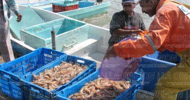 Pescadores viven panorama desalentador