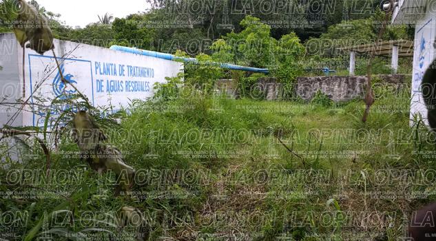Planta tratadora del Kilómetro 6 sigue sin funcionar