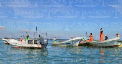 Pondrán freno a pesca ilícita
