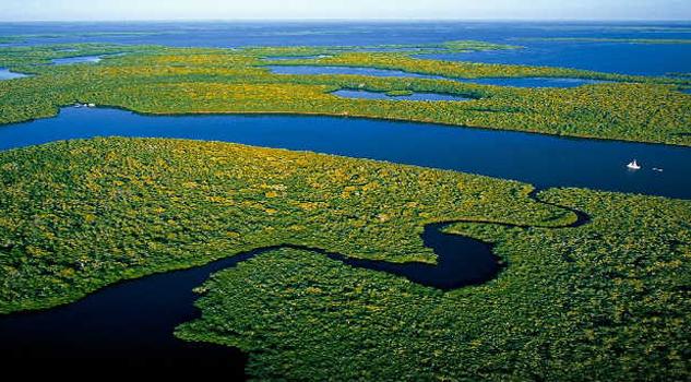 Presas amenazan el Amazonas