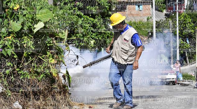 Previenen brote de dengue