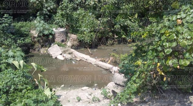 Rastro, sinónimo contaminación ambiental