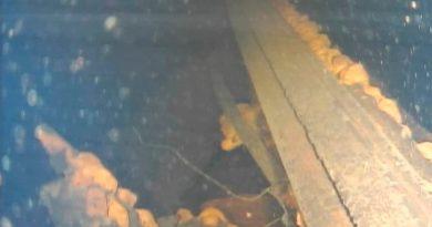 Lo que revelan las imágenes de un robot en el reactor de Fukushima