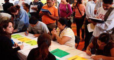 Perdida Empleo Veracruz