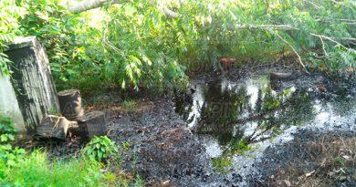 Se forma laguna de aceite en la Álamo-Alazán