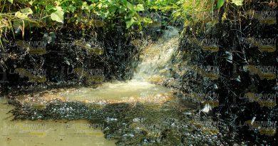 arroyo-contaminadoOK