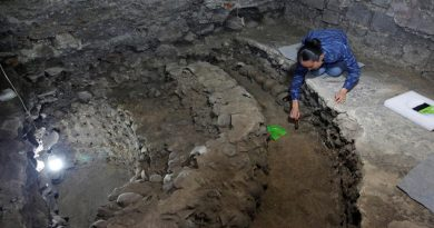 descubren-los-restos-del-altar-azteca-que-aterrorizo-a-hernan-cortes_ampliacion