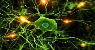 fondo_hd_43_neurona_3D