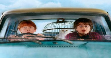 ¡El Gobierno mexicano inició la búsqueda del doble de Harry Potter!