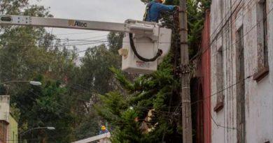 CFE desplegó personal en Veracruz para atender afectaciones por Franklin