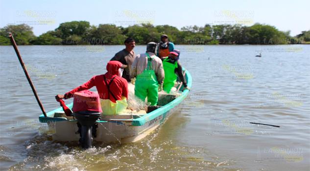 En la Laguna de Tamiahua