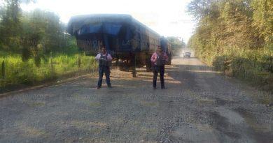 Policía Ministerial recupera góndolas y dolly robados