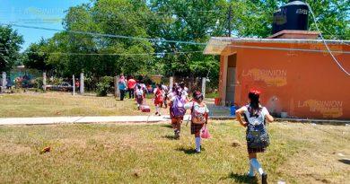 Tihuatlán Evacuan Primaria Ataque Abejas