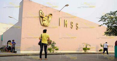 Calvario en el IMSS