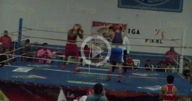 Campeonato Boxeo