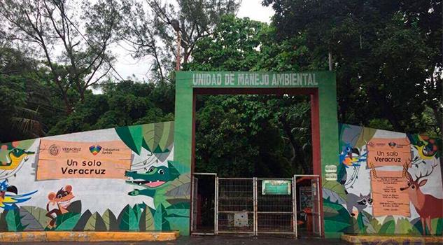 El zoológico de Veracruz no se cierra, aseguran autoridades