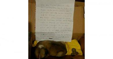 Niña se ve obligada a abandonar a su perra y deja carta Te dejo 8 pesos y dile que la quiero