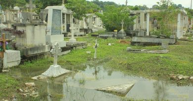 Panteón Convierte Granja Dengue