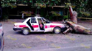 Acribillan Líder Taxista Pasajero Herido