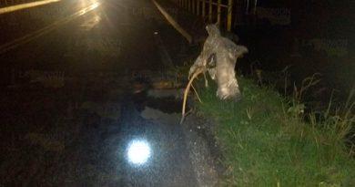 Se registra socavón sobre la carretera 180 Matamoros-Puerto Juarez1