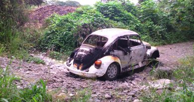 Un miniauto sedán5