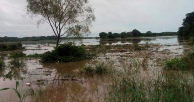 Desbordamiento Ríos Afecta Comunidades Minatitlán