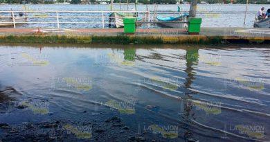Desborda Laguna Tamiahua