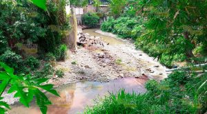 El arroyo es invadido por aves de rapiña y desperdicios.