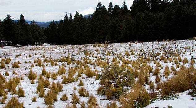Podría Caer Nieve Pico Orizaba Cofre Perote Próxima Semana