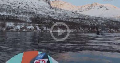 Paddleboarder Acerca Grupo Orcas Noruega