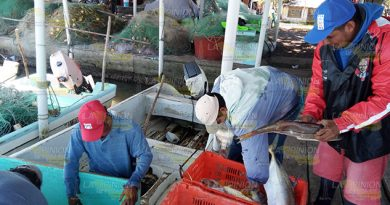 Seguro Vida Pescadores