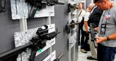 Demandan EU Vacíos Bases Datos Armas