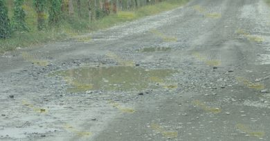 Devastados Caminos Sierra Totonacapan