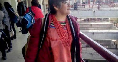 Veracruz Agresiones Activistas Defensores DH