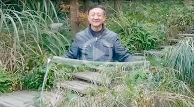 VIDEO: Una 'capa de invisibilidad'