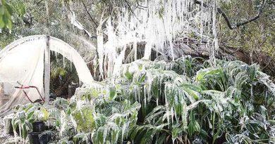 Frío Extremo Avanza Sureste Estados Unidos
