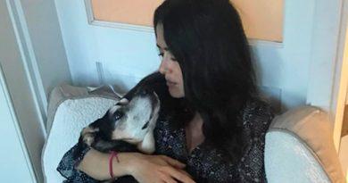 Murió Perrita Salma Hayek Rescató alles CDMX