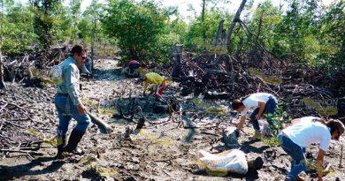 Piden Rescatar Área Mangle