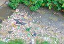 Arroyo contaminado por basura