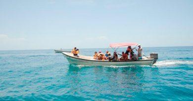 Lucran y ponen en riesgo a arrecifes