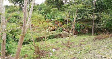 Abandonada Planta Tratadora