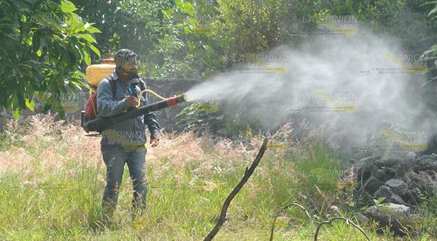 Calor Crece Peligro Dengue
