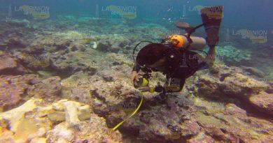 Destrucción Arrecifes